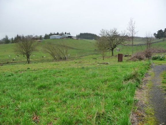 front_pasture_to_north